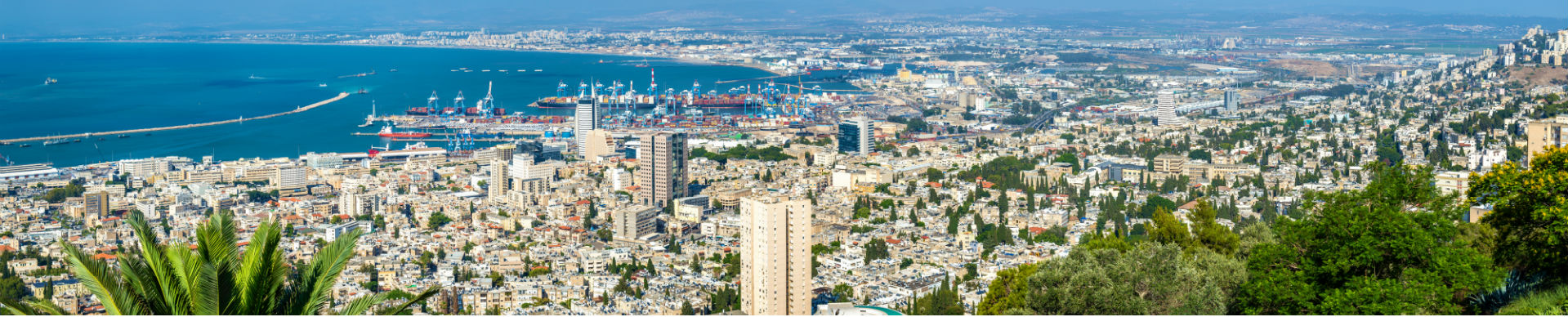 """יו""""ר הוועד – חיפה והצפון"""